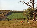 Farmland, Trent Park, Enfield - geograph.org.uk - 889368.jpg