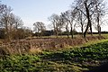 Farmland at Rippingale - geograph.org.uk - 312152.jpg