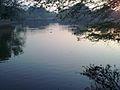 Fatehgarh Village Pond.jpg