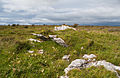 Faunarooska, Rathborney, Wedge Tomb Cl. 4 SE II 2015 09 04.jpg