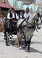 Feria de Mayo, Torrevieja 2010 (4594779900).jpg