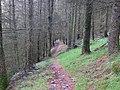 Ffridd Newydd - geograph.org.uk - 1011311.jpg