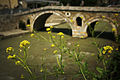 Flowers and Stone Bridge, Prizren.jpg