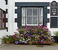 Flowers at the Queen's Arms, Constantine (7766995030).jpg