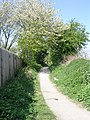 Footpath - Needless Inn Lane - geograph.org.uk - 1264707.jpg