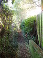 Footpath at the back of Biddenham - geograph.org.uk - 89581.jpg