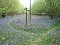 Footpath junction - geograph.org.uk - 414022.jpg