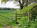 Footpath near Rowberry Farm - geograph.org.uk - 1287950.jpg