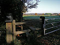 Footpath to Wintry Park Farm, from Wintry Park House - geograph.org.uk - 281120.jpg