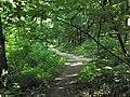 Forêt de Montmorency - panoramio.jpg
