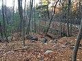 Ford's Folly dam near Nobscot Hill and Wayside Inn in Sudbury Massachusetts and Framingham MA.jpg