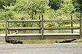 Forest Park, Springfield, MA 01108, USA - panoramio (22).jpg