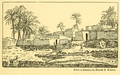 Foundations Chapter 1 Egypt.png