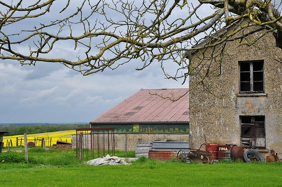 Rural corner in Élise (municipality of Élise-Daucourt, canton Sainte-Ménehould, arrondissement Sainte-Ménehould, Marne department, Champagne-Ardenne region, France).