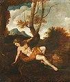 Frans de Neve - Narcissus.jpg