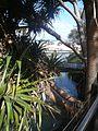 Frazier Island - Eli Creek 3 (4097347019).jpg