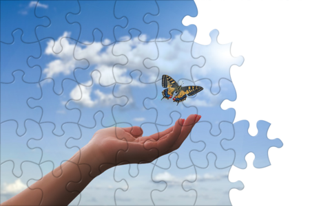 Freedom-Hand-Butterfly puzzles.png