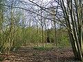 GOC Willian & Weston Hills 117 Willian Arboretum (20838857889).jpg