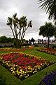Garden, Clacton-on-Sea, Essex - geograph.org.uk - 2037483.jpg