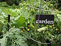Garden plot sign.jpg