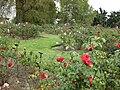 Gardenology.org-IMG 5364 hunt0904.jpg