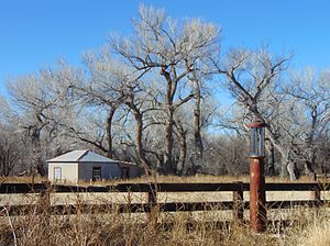 Little Boquillas Ranch - An old gas pump with the ruin of the blacksmith's shop and riparian trees in the background.