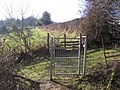 Gate and stile near Owl's Castle - geograph.org.uk - 1658487.jpg