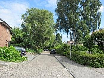 Geigerstraße