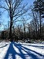 Georgia snow IMG 4942 (25076218918).jpg