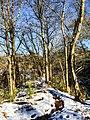 Georgia snow IMG 5230 (38231878484).jpg