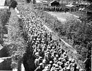 German POWs captured in Flanders by Brits2
