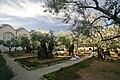 Gethsemane Garden (Mount of Olives).jpg
