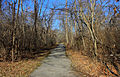 Gfp-missouri-babbler-state-park-bike-trail.jpg