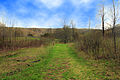 Gfp-wisconsin-natural-bridge-state-park-the-hiking-trail.jpg