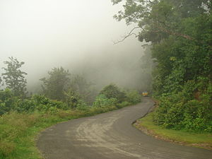 Visakhapatnam district - Fog on Ghat road to Paderu in Visakhapatnam District