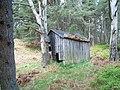 Glen Tanar derelict hut - geograph.org.uk - 1305328.jpg