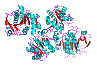 Glycogen synthase - Crystal structure of glycogen synthase 1 from Agrobacterium tumefaciens