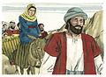 Gospel of Luke Chapter 2-1 (Bible Illustrations by Sweet Media).jpg
