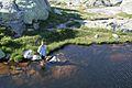 Gottard Pass (1674074968).jpg
