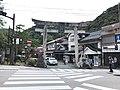 Grand torii of Taikodani Inari Shrine.jpg