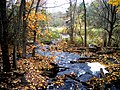Grant's Creek (Tay River) at Allan's Mill, October, 2009 (5020603381).jpg