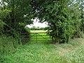 Grass field and gate near Cutler's Green - geograph.org.uk - 494230.jpg