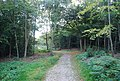 Greensand Way, Toy's Hill - geograph.org.uk - 1499375.jpg