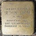 Grevenmacher, Stolperstein 06 Siegmund Hayum.jpg
