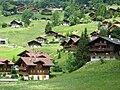 Grindelwald, chalets.jpg