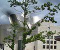 Guggenheim behind tree.JPG