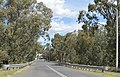 Gulargambone Castlereagh River Bridge.JPG