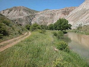 Flora of Turkey - Gypsum hills south of Sivas: gypsum and serpentine areas are exceptionally rich in endemic species