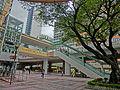 HK CWB HKCL tree 朴樹 Chinese Hackberry n escalators Nov-2013 01.JPG