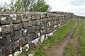 Hadrian's Wall (29489036757).jpg